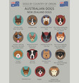 dogs by country of origin australian dog breeds vector image