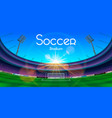 the soccer stadium vector image