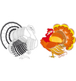 turkeys vector image vector image