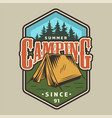 vintage camping colorful badge vector image vector image