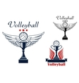 Volleyball icon with trophy and winged ball vector image vector image