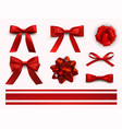 bows with ribbons set decorative and festive vector image