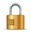 closed padlocks vector image