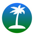coconut palm tree sign white icon in vector image vector image