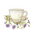cornflower tea vector image