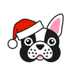 cute french bulldog in santa claus hat vector image vector image