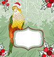 Festive Parrot Background vector image