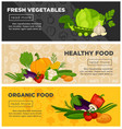 healthy fresh vegetables organic vegetarian vector image vector image