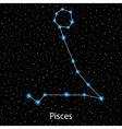 Pisces Zodiac sign bright stars vector image