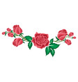 red rose and buds of roses in cartoon style vector image