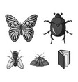 wrecker parasite nature butterfly insects set vector image