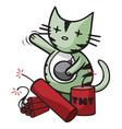big bang kitty vector image
