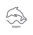 dolphin icon on a white background vector image vector image