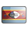 swaziland flag on white background vector image vector image