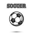 vintage soccer ball icon vector image