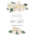 wedding bar menu template with tender flowers and vector image vector image