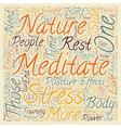 Why You Need to Meditate text background wordcloud vector image vector image