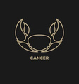 Cancer Horoscope Icon vector image vector image