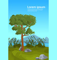 landscape pine mountain river reed outdoor nature vector image