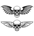 set of the winged craniums skull with bat wings vector image