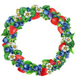 watercolor blueberry and strawberry round wreath vector image