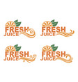 fresh juice emblems vector image vector image