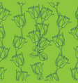 seamless pattern with roses on green vector image