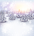 Winter Landscape Background with Christmas Trees vector image vector image