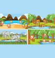 background scenes animals in wild