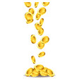 falling golden coins vector image vector image