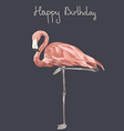 FlamingoStand15 vector image vector image