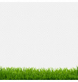 grass border transparent background vector image vector image