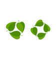 green leaves logo nature environment ecology vector image