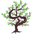 isolated money tree vector image vector image