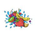 juicy and ripe fruits vector image