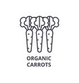 organic carrots line icon outline sign linear vector image