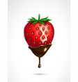 strawberry dipped in chocolate vector image
