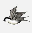 wild bird swallow symbol freedom fashion vector image vector image