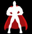cartoon a superhero vector image vector image