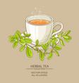 cup of marjoram tea vector image vector image