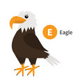 letter e eagle zoo animal alphabet english abc vector image