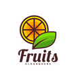 orange fruit with green leaf logo design food vector image