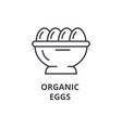 organic eggs line icon outline sign linear vector image