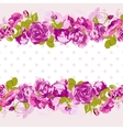 seamless border blossom roses vector image vector image