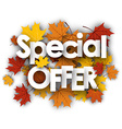 Special offer background with maple leaves vector image vector image