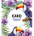 toucan tropic card watercolor exotic vector image vector image