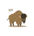 Wisent vector image vector image