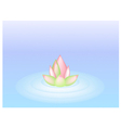 A Pink Lotus Flower on Blue Water vector image