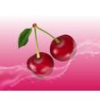 delicious juicy cherry in spray of juice vector image vector image