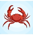 Detailed drawing of a sea crab vector image vector image